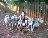 Terie Hansen pet sitter, dog walker, dog trainer in lilburn, ga