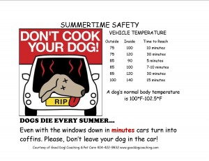 Don't Cook Your Dog, summer pet safety tips