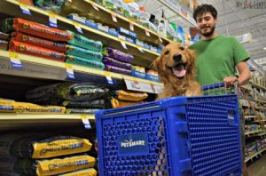 petsmart training outing for getting your dog to behave in public