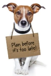 Pet Disaster Preparedness plan