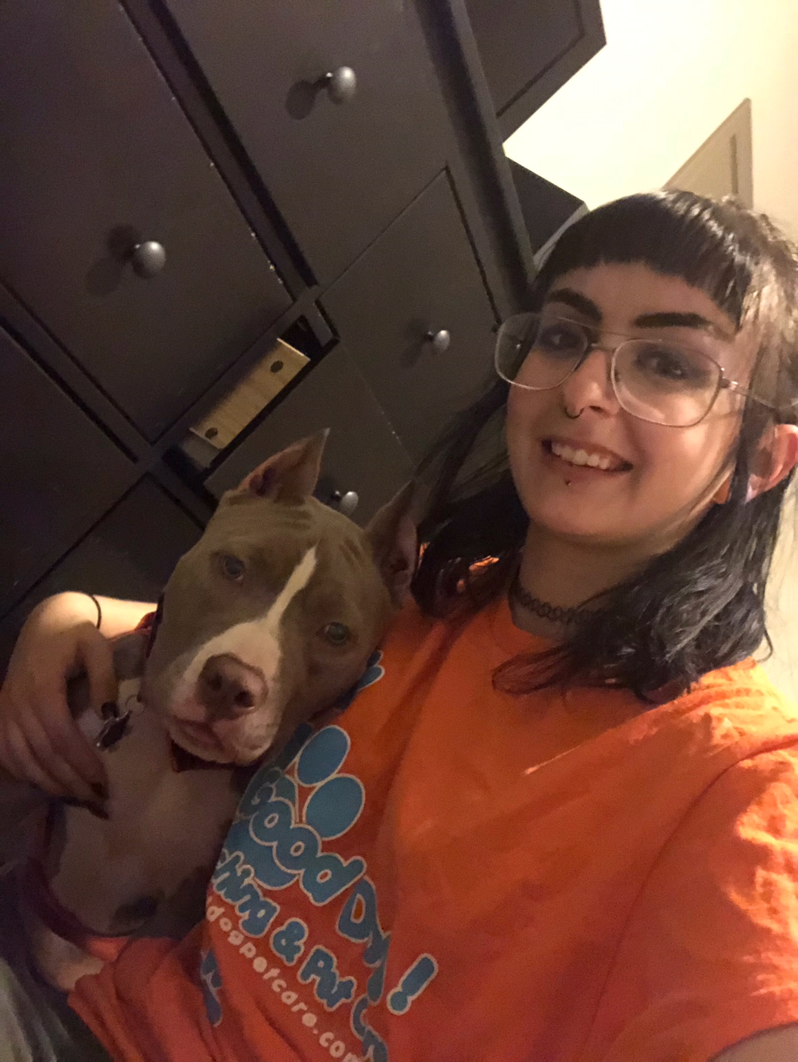 pet sitter bios professional dog walking and pet sitting in lilburn ga