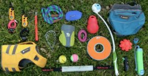 dog training tools dog training how to