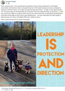 dog training review testimony